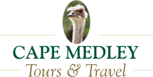 Cape Medley Tours